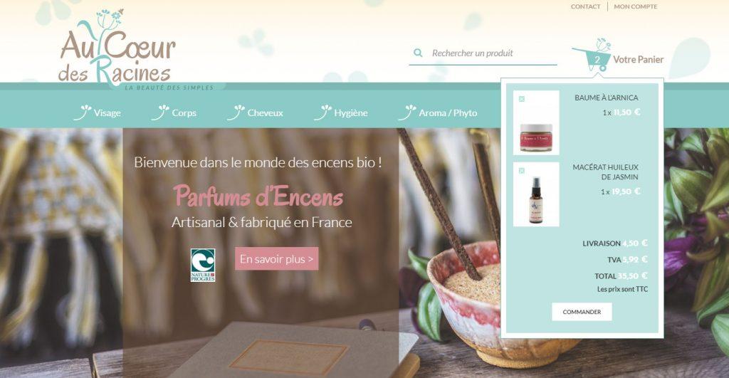 Au Coeur des Racines - la page d'accueil sur écran desktop